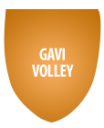 Logo Gavi volley